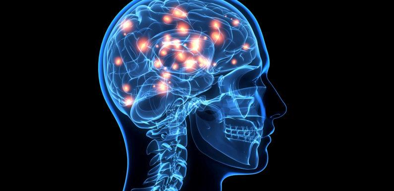 Как улучшить работу мозга, память, внимание, концентрацию. И как улучшить мозговое кровообращение.