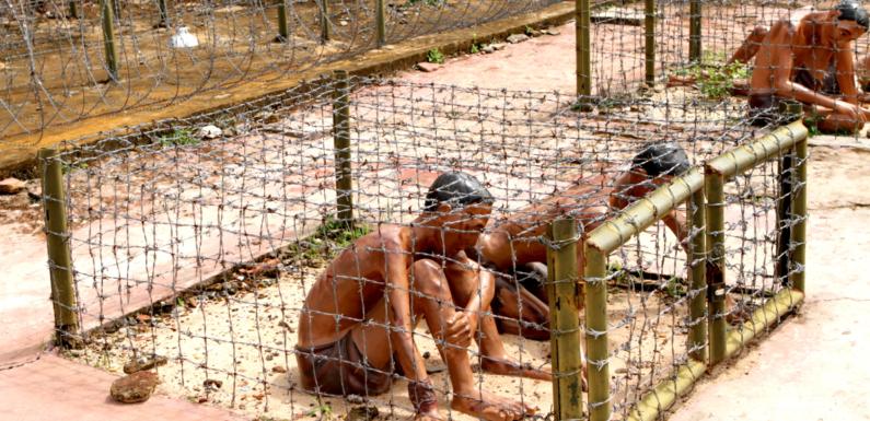 Печальные страницы истории Вьетнама — Кокосовая тюрьма